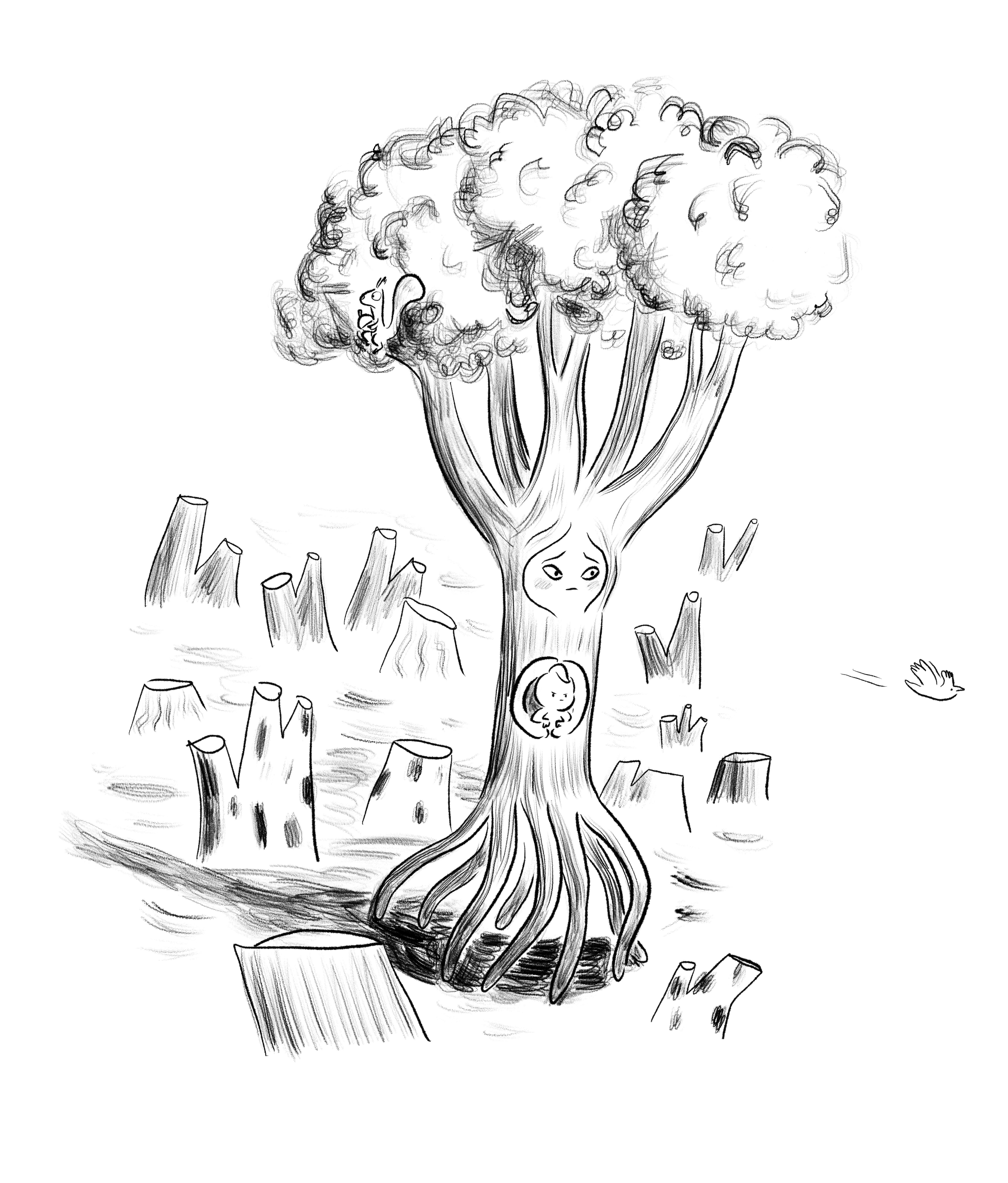 arbre-exode-couv