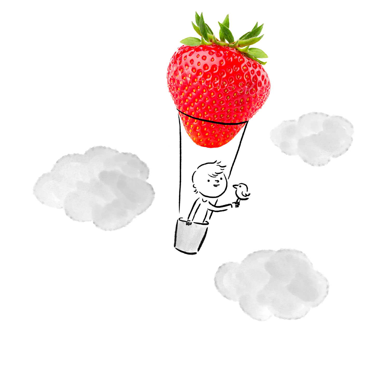 montgolfiere-v2